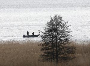 Årets första gädda i Norrtäljeviken? Foto: Roland Brinkberg
