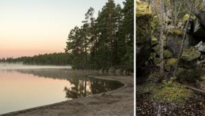 En tur i Tivedens nationalpark är en resa i tidlöst och väglöst land: Här känns sagan och leken nära