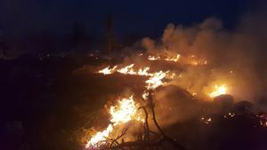 Lövruskor mot det branden mitt i natten. Det fick Stina Berg uppleva.