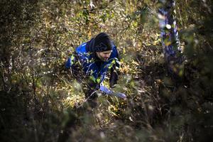 Mattias Agerberg deltar i ett patrullsök och letar här efter föremål i terrängen. Skallgångskedja är en utfasad metod vid eftersök av försvunnen person.