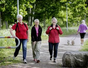 Pensionärerna Irene Forsell,  Ann-Katrin Lindblad och Berit Halldin är ute och går runt Oset varje torsdag. – Jag är inte främmande att stanna och ta ett dopp om jag är ute och cyklar, säger Berit (t h).