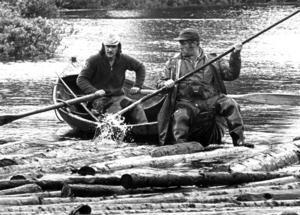 På vissa håll i länet höll flottningen på längre. Kurt Mårtensson och Rickard Johansson (vid årorna) var med när sista rumpan gick i Rörströmssjön 1979.