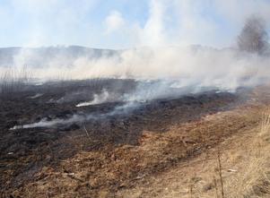 Antalet gräsbränder i Leksand sjönk drastiskt sedan förbudet infördes för två år sedan. Foto: Brandkåren Leksand.