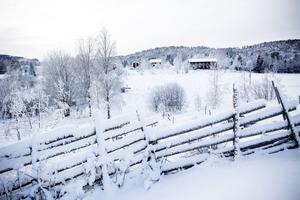 Rävsön ligger i Nordingrå.