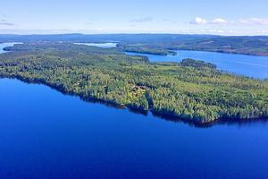 Vacker och stor gård omgiven av skog och vacker natur. Foto: Niclas Loom