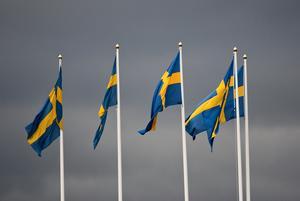 Språk, gemenskap och individualism är vad som utgör det svenska. Delad frihet.