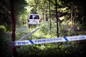 I juni i år gjordes skelettfynd i  närheten av den plats där delar av Fatima Berggrens kvarlevor tidigare hittats. De nya fynden visade sig även de komma från den sedan i maj 2017 försvunna kvinnan.