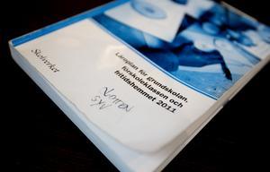 Läroplanen för grundskolan tar enbart upp studie-och yrkesvägledning i de inledande kapitlen vilket Lotten Johansson inte tycker är tillräckligt.