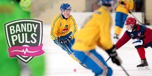 Se Daniel Berlin och de andra SAIK-stjärnorna i fyrnationsturneringen i Åby i helgen.