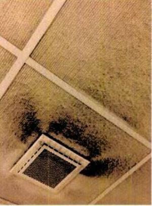 Avdelning 65, Falu lasarett, behöver både städning och upprustning, anmäler skyddsombudet till Arbetsmiljöverket. Bild ur anmälan.