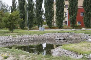 Dammarna är byggda och runtomkring ska det bli ett parkområde med promenadstråk.