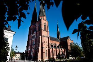 Domkyrkan i Uppsala. Foto: Pontus Lundahl/TT