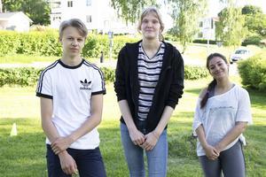 William Westman, Alice Christensen och Dijana Mihajlovic är årets aktivitetsledare och går alla på gymnasiet.