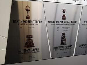 Båda bröderna har vunnit Art Ross Trophy (priset till bästa poänggöraren i NHL) och King Clancy Memorial Trophy (priset till spelare som gjort humanitära insatser utanför isen). Henrik vann Hart Trophy 2010, priset till ligans bästa spelare.