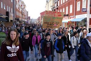För två veckor sedan demonstrerade eleverna från Morkarlbyhöjdens skola  och gick från skolan till kommunhuset för att uppvakta skolchefen och för-och grundskolenämndens ordförande. Arkivbild.