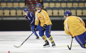 Joakim Andersson fick stå över VM-premiären – men förbundskaptenen