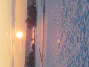 När jag och hunden Wille gick en liten promenad på sena eftermiddagen fick vi se en fin solnedgång över fina Julberga utanför Köping. Foto: Ida Berg.
