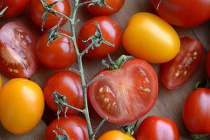 Visst har Hugo rätt! För inuti en tomat finns ju faktiskt som två rum. Foto: TT