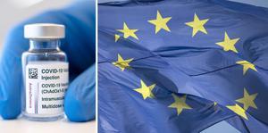 EU-kommissionen kommer inte att förnya vaccinkontrakten med Astra Zeneca och Johnson & Johnson nästa år. Arkivbilder.