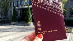 polis boka pass
