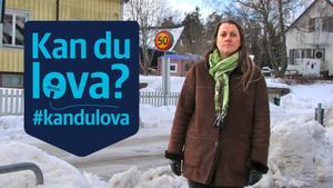 Evgenia Shutova är en av VLT:s läsare som ställt en fråga till kommunpolitikerna via #kandulova. Hon vill att de ska lova att snöröjningen i Surahammar kommer att skötas ordentligt i vinter.