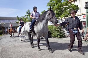 Hästparaden är en del av Hästveckan i Bollnäs.