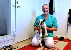 Veterinären Johan Bromée är en av ägarna av Sundsvalls djursjukhus.