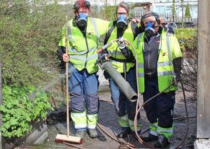 Ankan Pettersson, Mia Andersson och Päivi Bärgård poserar skämtsamt under arbetet med att städa upp på en innergård.