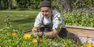 Robin Hytter, souschef på Färna Herrgård, är en av finalisterna i tävlingen årets ekokock 2019. Finalen är i Växjö den 13-14 september, då finalkockarna kommer laga en trerätters meny utifrån en hemlig råvarukorg med kravmärkta produkter.