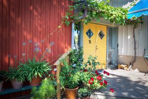 Redan vid entrén märker man att de som bor i huset är intresserade av blommor. Här finns förutom de mer vanliga pelargon och rosenskära även de lite mer krävande blyblomma och Afrikas blå lilja.