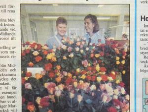 ST 23 juni 1993.