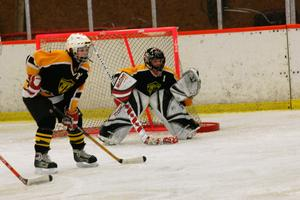 Josefine Ahlin är en av många framgångsrika hockeyspelare som har fostrats i Skogsbo SK. Foto: Roland Bärtilsson