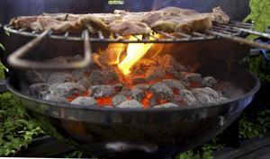 I Leksands kommun är det tillåtet att grilla på egen tomt. Foto: Hasse Holmberg/Scanpix