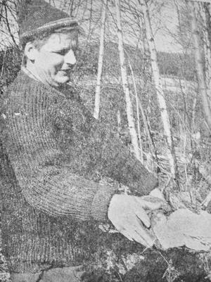 Bävrar vid Nävelsjö hos Göte Andersson, var det tidningens aprilskämt 1971? Det förtäljer inte historien och 50 år senare låter det inte allt för osannolikt.