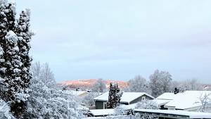 Norra Berget sett från Östermalm. Bild: Lars Paro