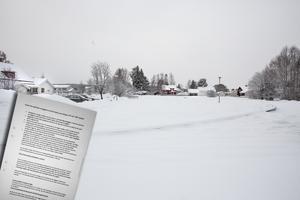 Ett flertal synpunkter har kommit in till kommunen med anledning av det planerade LSS-boendet i Ljusdal.