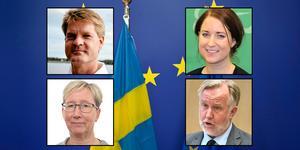 Markus Lundin (KD), Emma Wiesner (C),  Eva-Lena Jansson (S) och  Johan Pehrson (L) är några av politikerna som deltar i EU-debatten i Oscarsparken i Lindesberg.