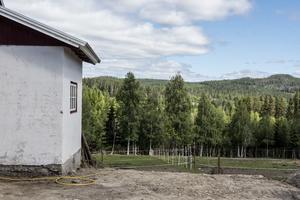 Stillheten och utrymmet lockade paret Schmeitz till Norrland.