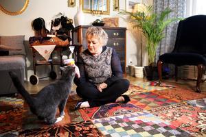 Katten Ella vill att matte fokuserar på henne. Den svarta sammetsfåtöljen i bakgrunden är köpt på Effecta. Gunmari har två.