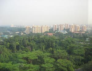 Tidig morgon på kontoret, Thomson Road, med den tropiska, fuktiga hettan redan dallrande vid horisonten. Singapore har inga årstider.