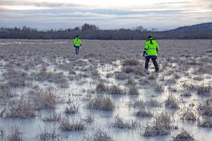På vintern gör isen att det lättare att ta sig ut till den lilla ön i naturreservatet. Men om ett par år blir det också lättare på sommaren, då en vägbank med en gångled ska anläggas här.
