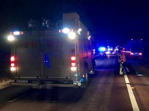I fordonet som krockade med en älg färdades fyra personer.