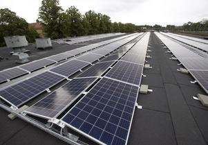 Anläggningen på taket på taket vid Fältskärsleden är 1 800 kvadratmeter stort. Bilden visar inte hela anläggningen.