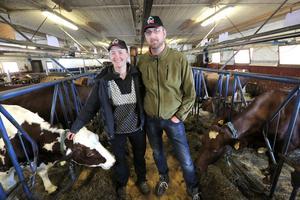 Malin och Mattias i ladugården. Målet med Grindals gård är att uppdatera till en modernare ladugård inom några år.