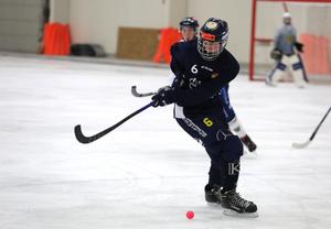 Femtonårige Elliot Hellström har fått debutera för Falu BS seniorlag den här säsongen.