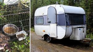 Var än kvinnan har bott har det kommit in anmälningar om att hon misskött sina djur. Bland annat har hon låtit dem bajsa och kissa inomhus i sina bostäder. Även i husvagnarna där de flesta hundarna hittades stank det av avföring.