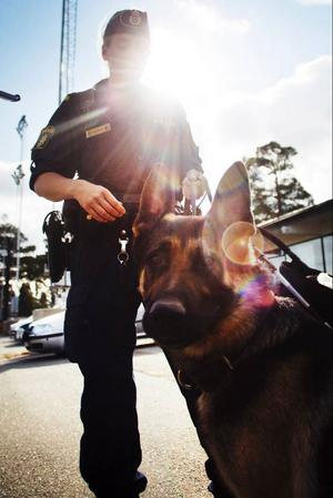 Polisen Anne Hamrin och schäfern Fonzo var ett populärt inslag bland besökarna på Djurens dag.