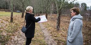 Bostäderna ska enligt förslaget byggas upp emot Karlslundsvägen. Allén där Gunilla Lindstedt och Karin Wallin står ska bli kvar.