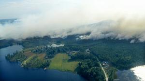 Flygbild över Ljusdals skogar, tagen under onsdagen. Foto: TT