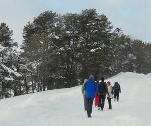 Gruppen på vandring i det snörika landskapet! Mot fikat i Minnesgärde! Foto: Carin Brobacke